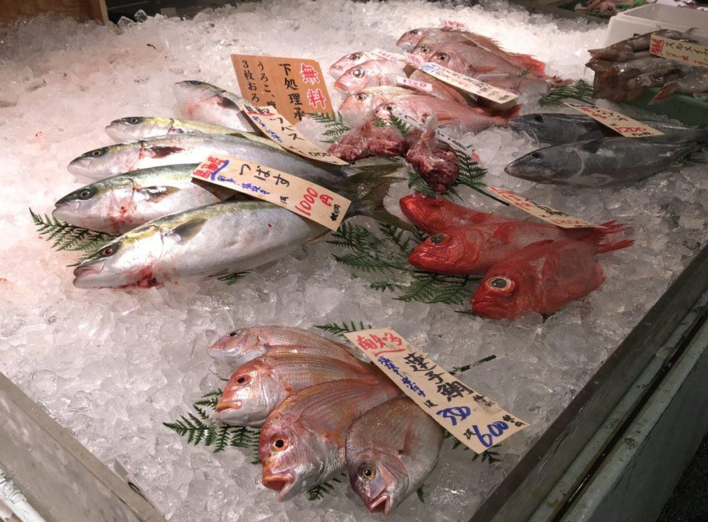 魚太郎大府の魚