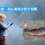 知多半島冬の釣り攻略