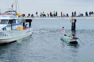 豊浜釣り桟橋のイワシ漁