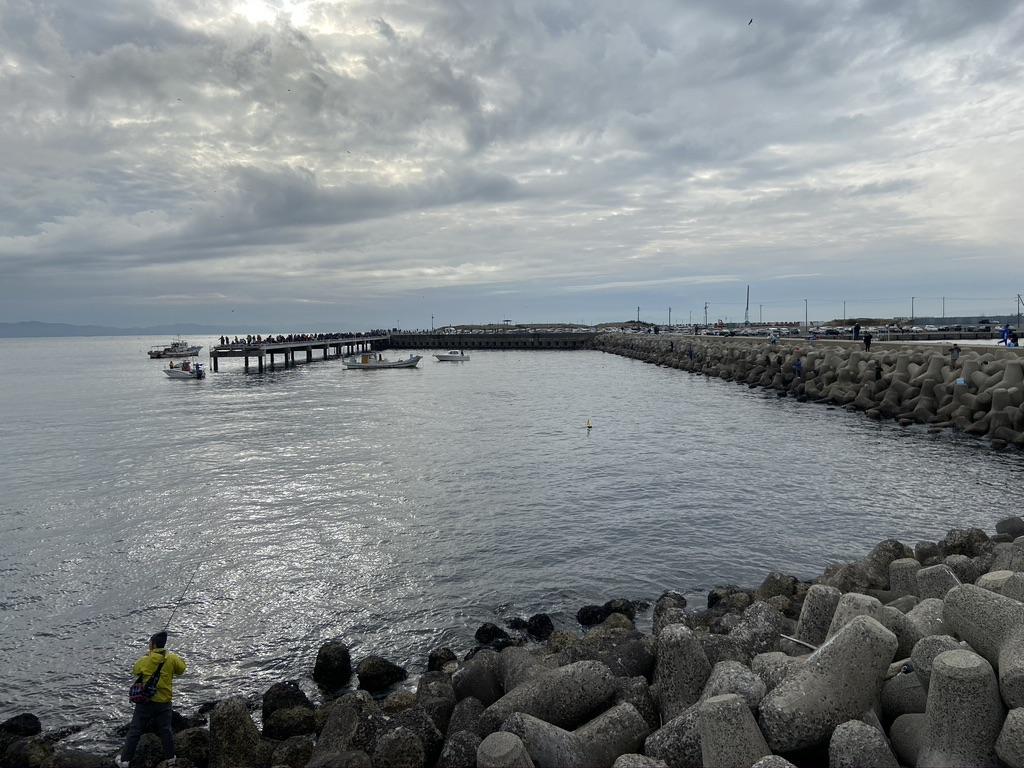 豊浜釣り桟橋の漁