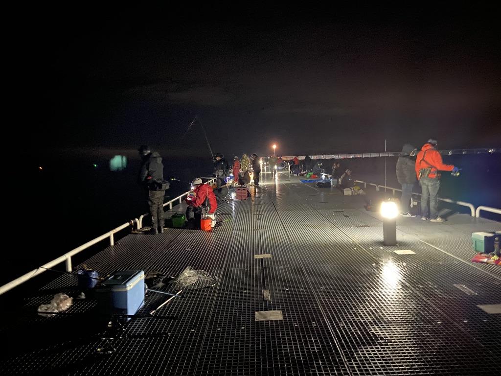 豊浜釣り桟橋 夜釣り