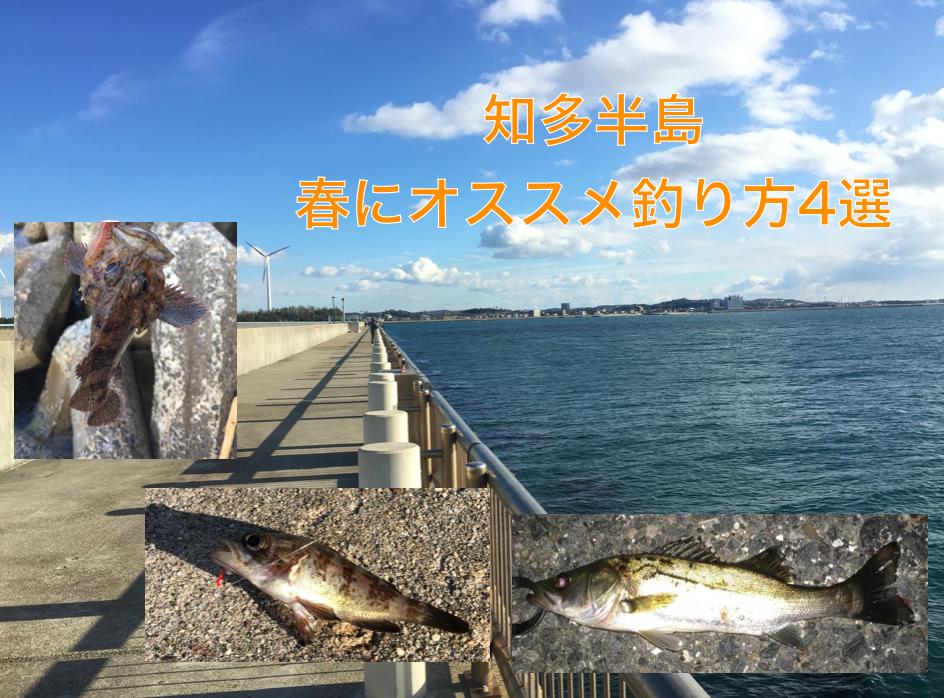知多半島春のおすすめ釣り方