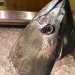 魚太郎で買い物するなら知っておきたい6つのこと