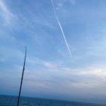 豊浜釣り桟橋2021年春の釣果