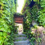 知多半島の隠れ家カフェnuu